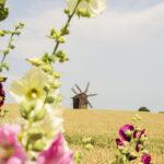 Куда поехать на майские праздники в Украине: ТОП-7 непопсовых маршрутов