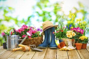 посевной календарь на апрель май