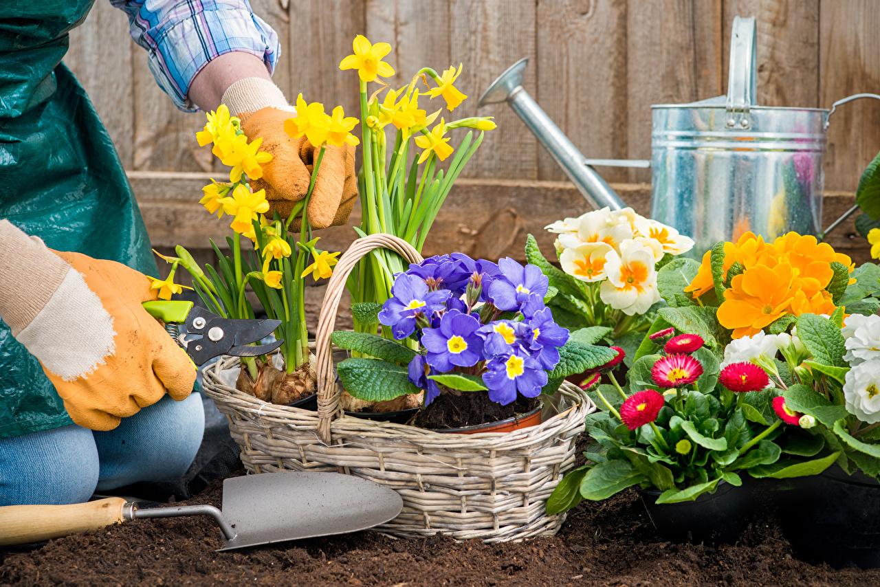 Календарь садовода и огородника на май 2021 года