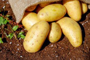рецепт запеченного фаршированного картофеля