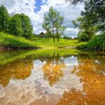 Приметы июня: прислушиваемся к природе