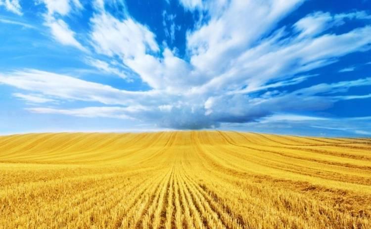 день независимости украины красивые поздравления